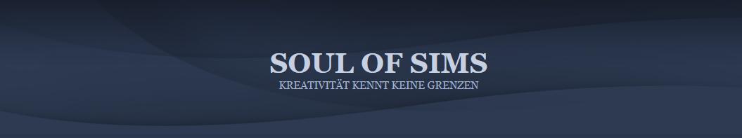 Soul of Sims